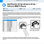 Axle-Bolt-Type-Identification-–-BMW-F-Chassis-Vehicles-ES